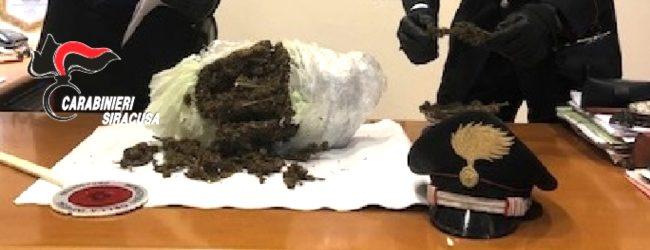 Carlentini | Un chilo di marijuana nascosta nell'area a verde di una scuola