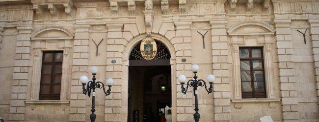 Siracusa| Il consigliere comunale M5S Francesco Burgio interroga l'amministrazione su nuovo canile ed Erga