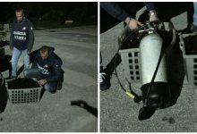 Noto| Pesca Illecita di ricci di mare: 1000 euro di sanzione e sequestro dell'attrezzatura a due sub