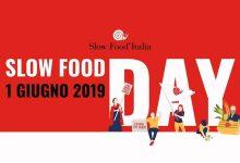 Buccheri| Slow food day: Guida agli oli extravergini in aula consiliare di Buccheri