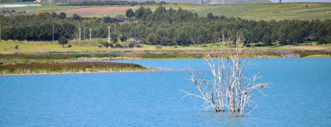 Lentini   Argine ovest del lago, quasi 500 mila euro per la sistemazione della strada di coronamento
