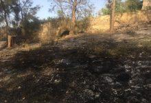 Augusta| Incendio nei pressi del Castello Svevo domato dai Vigili del fuoco.