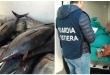 "Siracusa  Operazione ""By Catch"": Controlli sulle attività di pesca"