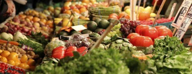 Siracusa  Operatori di Casina Cuti: Il via alla vendita di prodotti agroalimetari