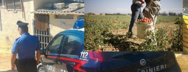 Siracusa-Noto| Intermediazione illecita e sfruttamento del lavoro: Arrestati due imprenditori
