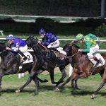 Siracusa| Galoppo, ritornano in pista le corse dei cavalli