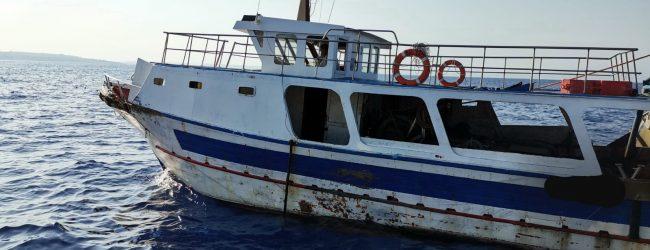 Augusta  Pesca a strascico illegale a Brucoli: interviene la Capitaneria di porto