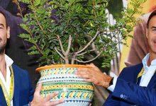 Lentini | Basilico idroponico, Oscar Green 2019 di Coldiretti a un giovane imprenditore agricolo lentinese