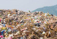 Palermo| Rifiuti, l'assessore Pierobon ai Comuni: istituire gli ispettori ambientali