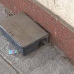 Siracusa| Riprende il programma di derattizzazione