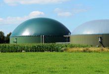 Lentini | Impianto di biogas, il Coordinamento per il territorio chiede la convocazione di un consiglio comunale