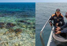 Brucoli| Sequestrati circa 200 ricci di mare