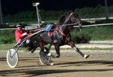 Siracusa  Ippodromo del Mediterraneo, Si inaugura l'anno con sette corse al trotto