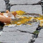 Siracusa| Lancio di uova contro mezzo della municipale