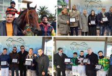 Siracusa| Galoppo, Dream Painter vola e vince il Memorial Mazzarella