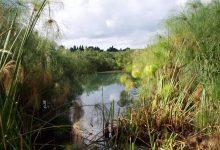 Siracusa| Progetto con otto scuole per valorizzare la riserva Ciane Saline