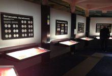 Siracusa| Museo Paolo Orsi senza sanificazione e custodi a rischio infezione