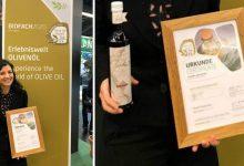 Siracusa| Competizione sull'olio d'oliva, terzo posto nel mondo