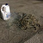 Siracusa| Pescatore sportivo in area marina protetta pescava illegalmente con palangaro