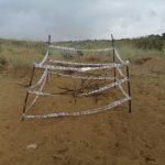 Noto| Delimitato un nido di tartaruga marina sulla spiaggia dell'eloro