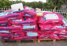 Augusta| I consiglieri del M5S donano cibo e prodotti per cani