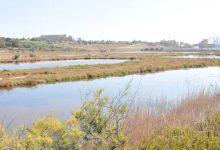 Augusta| Riserva naturale le saline: ne sollecita l'istituzione Italia Nostra