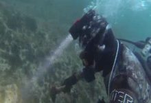 Siracusa| Sub scoperti a pescare illegalmente di notte in area marina protetta