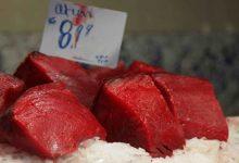 Siracusa e Provincia| Sequestrato in pescheria tonno rosso privo di tracciabilita'