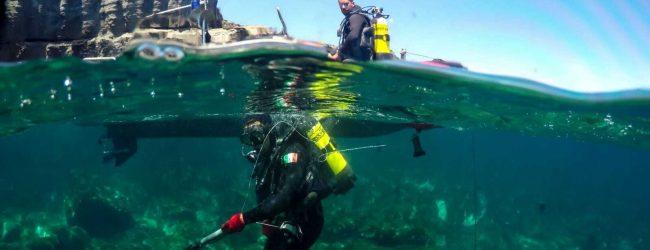 Pantelleria| I Palombari della Marina di Augusta hanno neutralizzato 18 ordigni