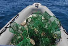 Siracusa| Sanzionati due sub per pesca abusiva