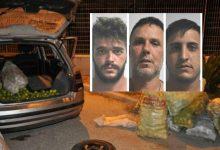 Avola| Pronti per essere caricati su un'autovettura 900 kg di agrumi rubati in contrada Saccollino