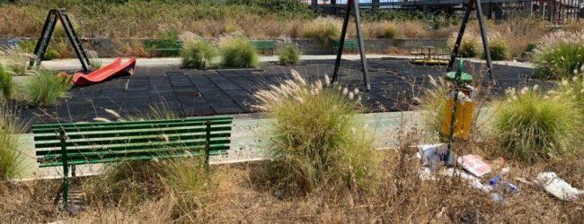 Augusta  Erbacce nell'area giochi del Monte: la denuncia di Mangano