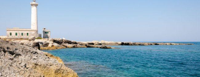 Augusta| Futuro utilizzo della costa da parte dell'Autorità di sistema portuale: Italia Nostra chiede lumi
