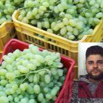 Lentini | Ruba uva nelle campagna di Licodia Eubea, catanese arrestato dopo un inseguimento