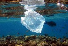 Siracusa| Plastic Free: nuove misure per la riduzione dell'utilizzo di materiale plastico
