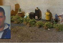 Cassibile| Gestiva una serra di piante di marijuana, arrestato 53enne