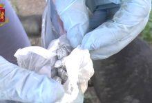 Siracusa| Operazione antidroga, denunciati due giovani