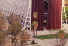 Augusta | Hangar: alberi infestanti, Lamba Doria difende la Marina