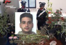 Floridia | Pusher con il pollice verde: arrestato dai carabinieri