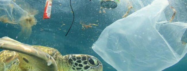 Augusta | I rifiuti saranno pescati dal mare: accordo tra il Comune e il Co.Ge.Pa.