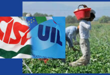 Siracusa | Protocollo di intesa per la prevenzione di attività illecite nell'agricoltura. Soddisfazione dei sindacati