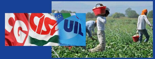 Siracusa   Protocollo di intesa per la prevenzione di attività illecite nell'agricoltura. Soddisfazione dei sindacati