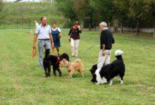 Augusta | Istituzione area sgambatura cani. Esulta Fiamma Tricolore