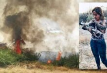 Lentini | Incendi, Cunsolo (M5s): «Ogni anno la stessa storia»