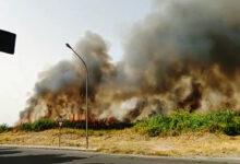 Lentini | Pomeriggio di fuoco, quattro roghi mettono paura alla popolazione