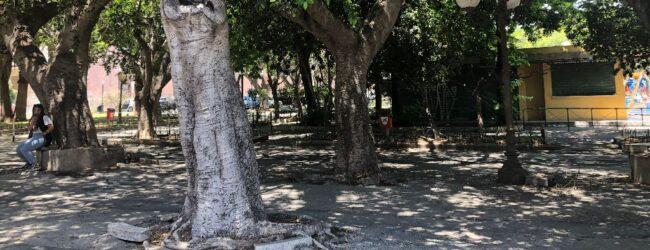 Augusta   Spazi disponibili per commercio su area pubblica per rilanciare la villa comunale