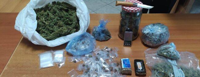 Cassibile   Cane antidroga fiuta la droga nascosta in cucina: arrestato un 35enne