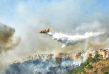 Palermo | Rischio incendi, revocate ferie al personale del Corpo forestale