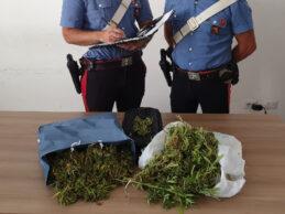 Carlentini | In giro per la città con due buste contenenti quasi due chili di marijuana