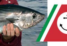 Siracusa   Disposta l'interruzione immediata della pesca sportiva e ricreativa del tonno rosso